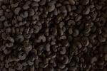 Суха храна за коте Любимец птиче дроб 10кг