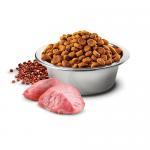 N&D QUINOA DIGESTION - Пълноценна храна за кучета в зряла възраст с агнешко, киноа, копър, мента и артишок. Високо смилаема формула за здравето на стомаха - три разфасовки