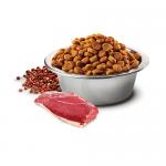 N&D QUINOA SKIN & COAT- Пълноценна храна с киноа за кучета в зряла възраст над 1г. за всички породи при чувствителен стомах, за здрава кожа и козина- с патешко, кокос и кукума- три разфасовки
