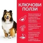 Hills - Science Plan Adult Sensitive Stomach & Skin – Пълноценна суха храна за кучета над 1 година с чувствителен стомах и чувствителна кожа 14 кг