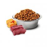 N&D CAT GRAIN FREE PUMPKIN VENISON & APPLE ADULT – пълноценна храна за котки над 1 година, с тиква, еленово месо и ябълки - 0.300кг; 1.500кг