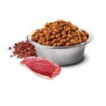 N&D QUINOA URINARY с патешко месо - Пълноценна храна за котки в зряла възраст с патешко месо, киноа, червена боровинка и лайка. За възстановяване на здравето на уринарния тракт и предпазване от струвитни и оксалатни камъни - две разфасовки