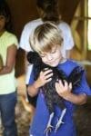 Детенце гушка черно пиле
