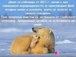 27 Февруари - Международен ден на полярната мечка