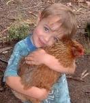 Синеочко прегръща кокошка
