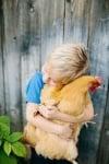 Дете прегръща оранжева кокошка