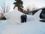 Акула от сняг