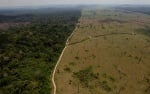 Дилма Русеф наложи частично вето на спорния закон за Амазонската джунгла