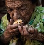 Баба с пиленце