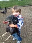 Малко дете с голяма кокошка