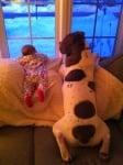 Бебе и куче боксер гледат през прозореца