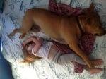 Бебе и куче спят заедно