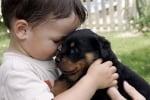 Бебе ротвайлер и момченце