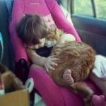 Бебе с котка в кола