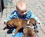 Бебенце с кученца