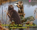 Котешки бойни изкуства