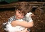 Момче прегръща кокошка