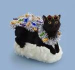 Черна котка със слънчеви очила върху ориз за суши