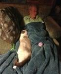 Човек спи с котката си
