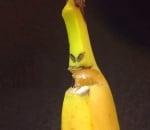 Чудовище от банан