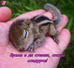Да се събудиш в сигурни ръце