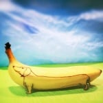 Дакел банан
