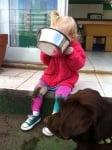 Дете яде кучешка храна