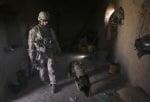 Екипирано куче в армията