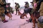 Еврейски войници с немски овчарки