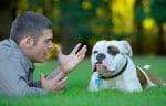 Говоря с кучето си