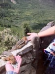 Хора хранят катерички