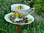 Хранилка за птици от чашка за кафе