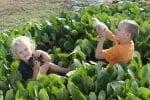 Деца с пилета