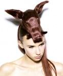 Животните като изкуство за фризьори и стилисти (снимки)