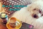 Кафенце в леглото
