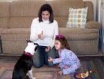 Как да обучим глухо куче