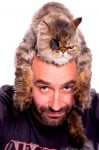 Калин Вельов с котка на главата