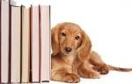"""Стартира благотворителната кампания """"Книги спасители"""""""