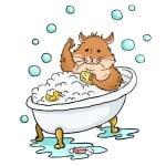 Къпе ли се хамстера