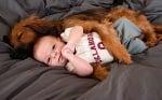 Кокер и бебе спят заедно