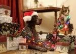 Коледни лампички кучета котки