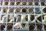 Колекция от подаръци от гарваните