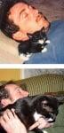 Коте спи на възглавница