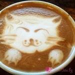 Котешко кафенце