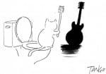 Котка китара