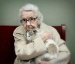 Котка с баба