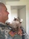 Котка с войник