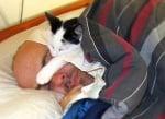 Котка спи на човек