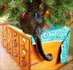 Котка в коледна елха