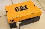 Котка в кутия от обувки